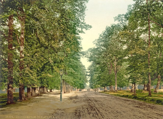 The Avenue in 1900